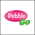 icon pebble go
